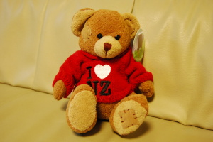 Teddy Bear NZ