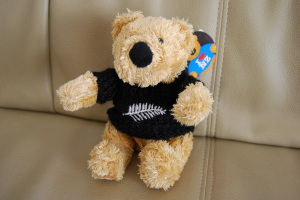 Teddy Bear NZ