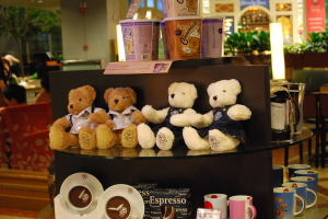 Teddy Bear in S'pore