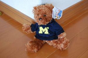 Teddy Bear Spartans