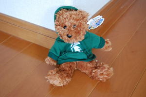 Teddy Bear Wolverines
